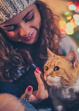 Tips bij vuurwerkangst Dierenkliniek Kattenbroek